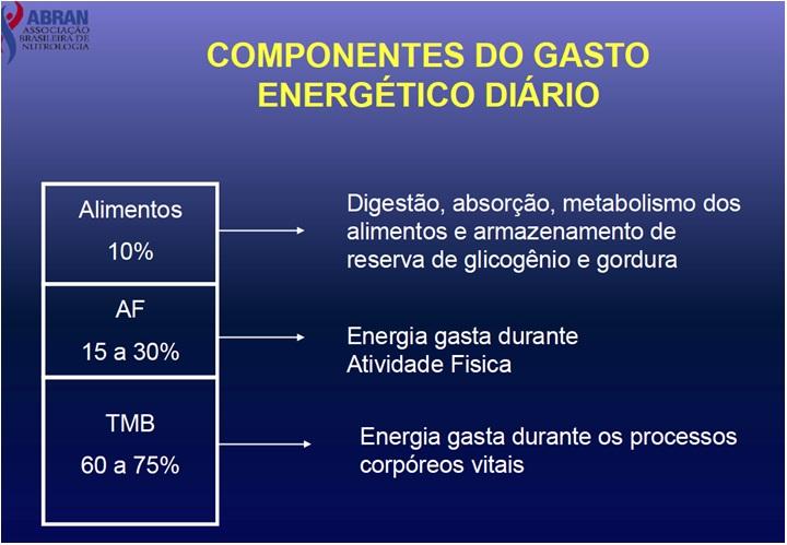 metabolismo glucidos resultados